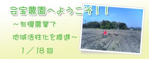 ブログ背景コピー2.jpg