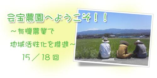 ブログ背景15.jpg