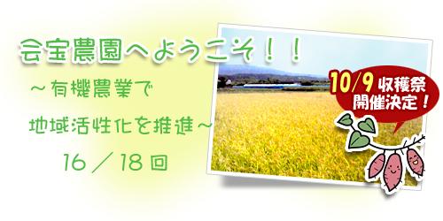 ブログ背景16.jpg