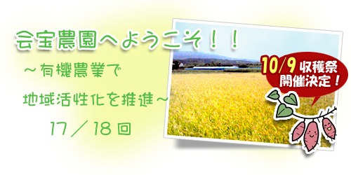 ブログ背景17.jpg