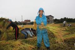 収穫祭はさがけ.jpg