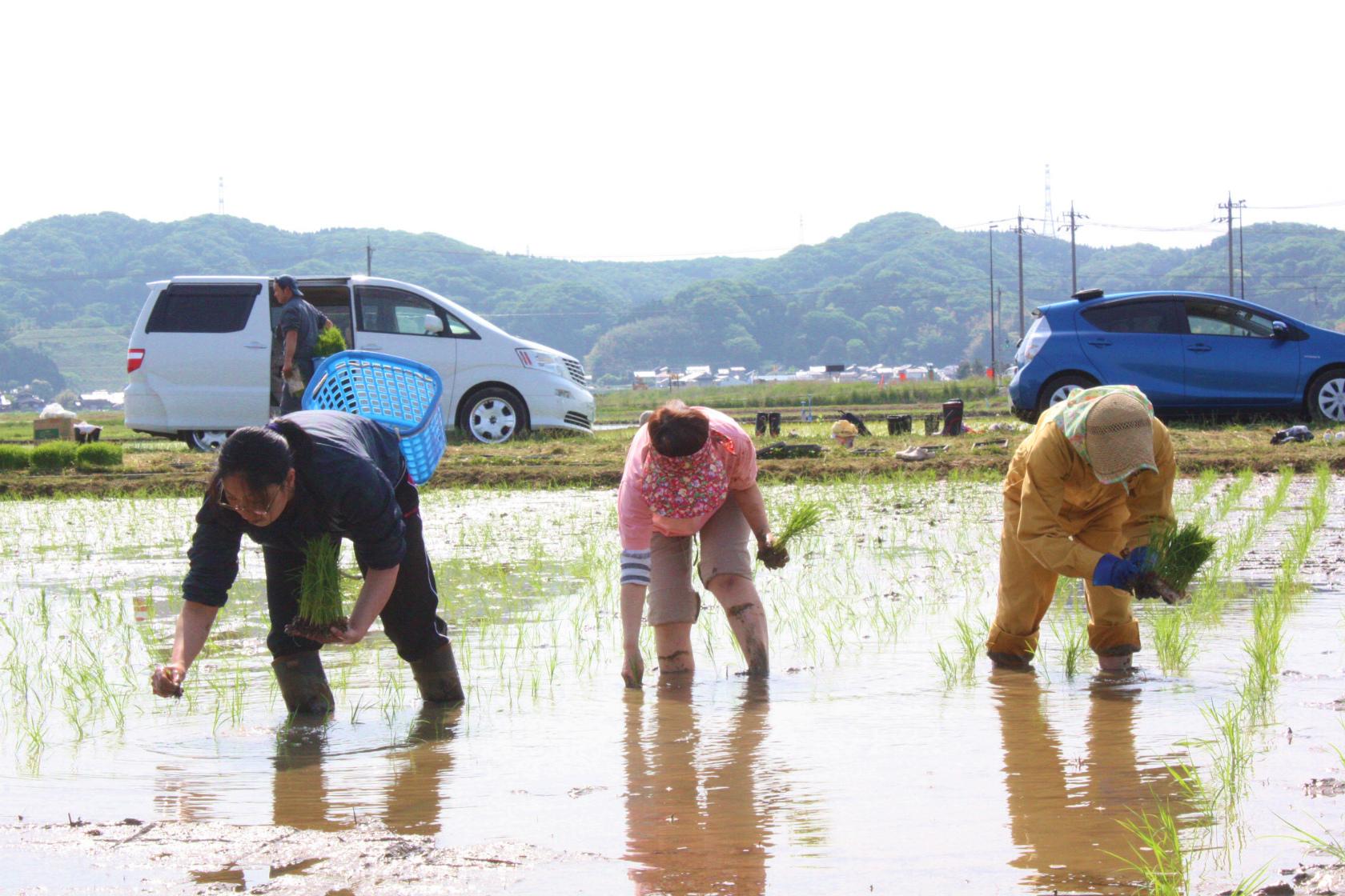 http://www.kaiho.co.jp/jp/news/img/20140524-14.jpg